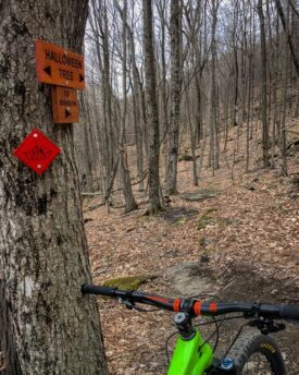 "a tree with trail sign markers on the left, with a green mountain bike leaning against it with a trail in front of it. The trail signs say ""Halloween Tree"" and ""to Mansion"". A red BATS logo trail marker diamond is below the signs"